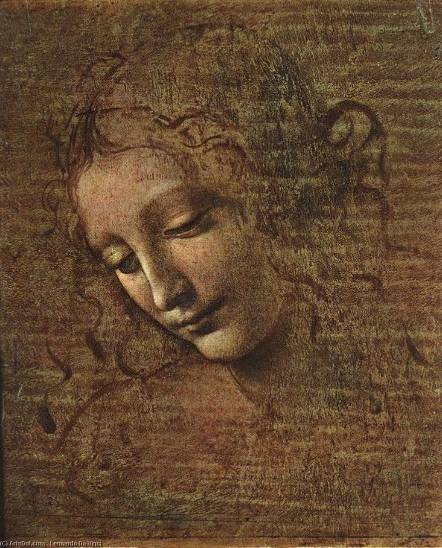 Order Reproductions | Head of a Tousled Young Woman, 1508 by Leonardo Da Vinci (1452-1519, Italy) | ArtsDot.com