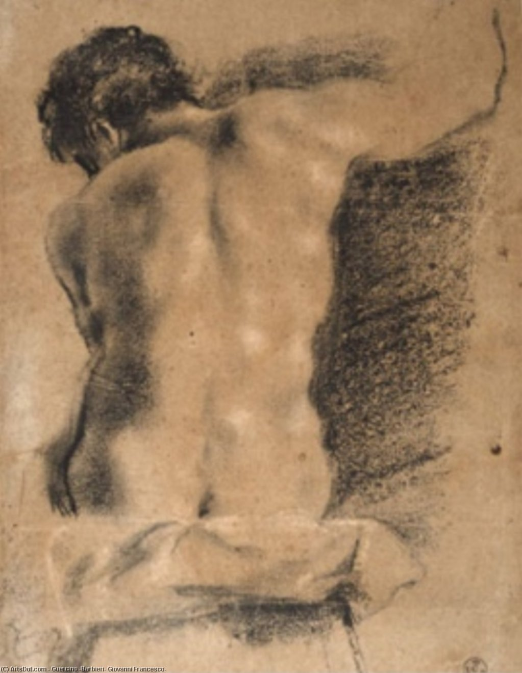 Sitting young man from behind, Drawing by Guercino (Barbieri, Giovanni Francesco) (1591-1666, Italy)