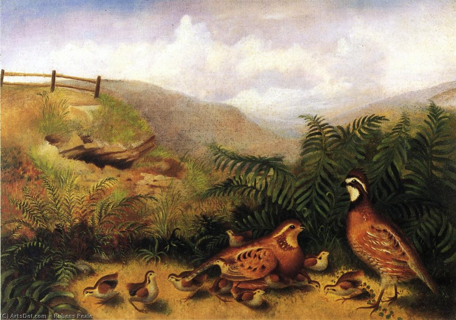 Landscape with Quail - Cock, Hen and Chickens by Rubens Peale (1784-1865, United States) | Art Reproduction | ArtsDot.com