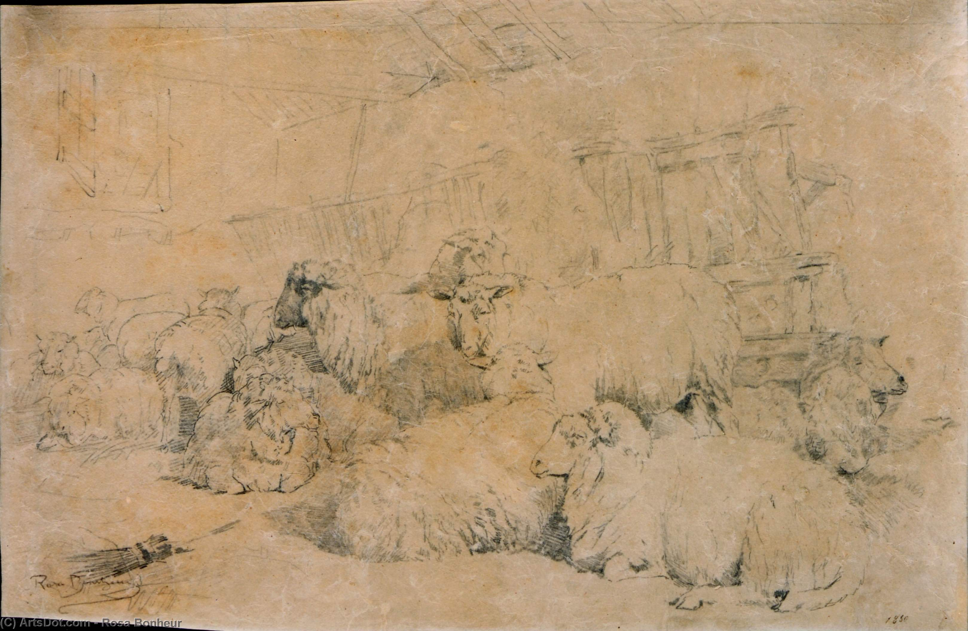 Flock of Sheep in Stable by Rosa Bonheur (1822-1899, France) | Museum Quality Reproductions | ArtsDot.com