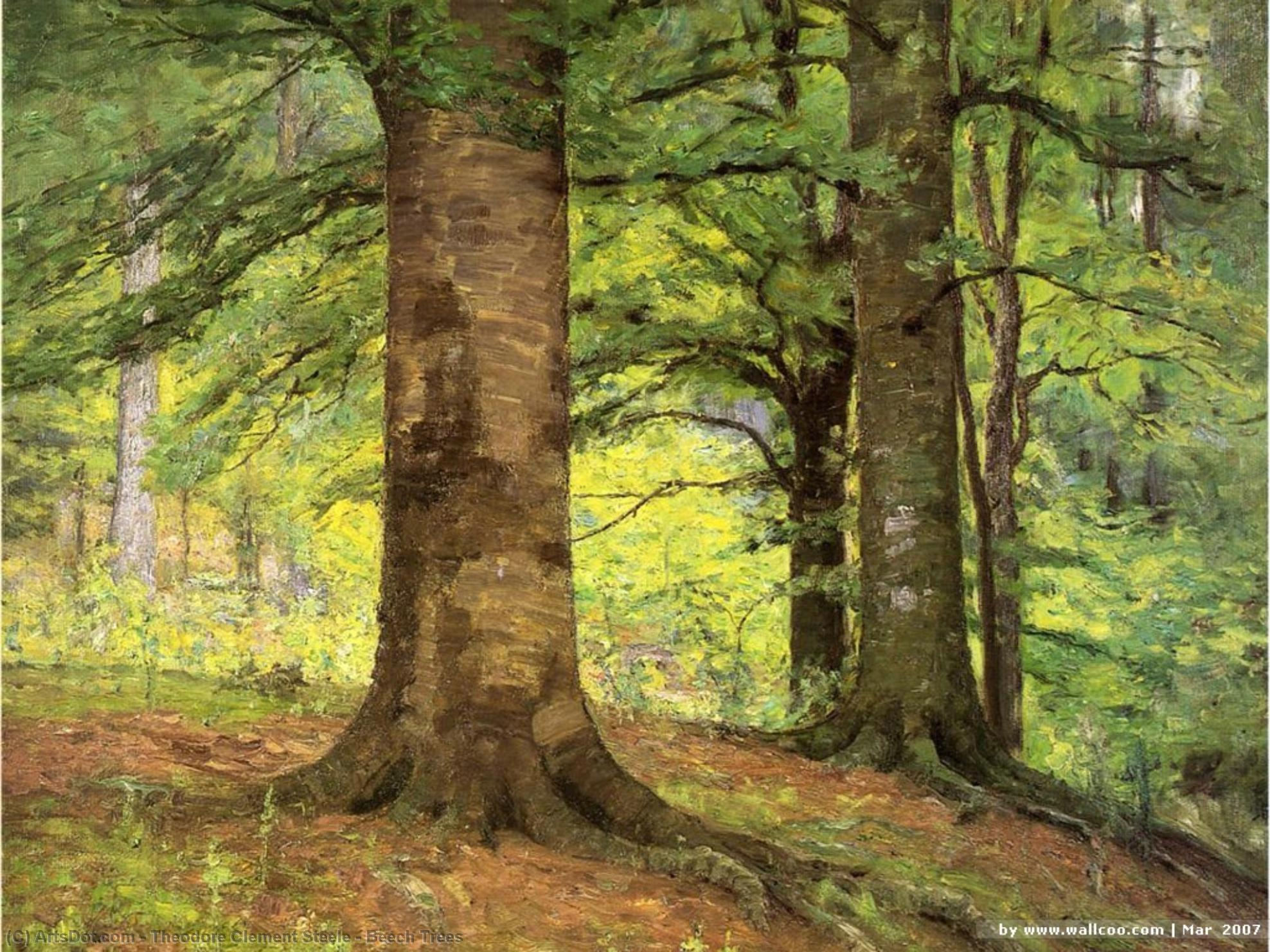 Beech Trees by Theodore Clement Steele (1847-1926, United States) | Museum Quality Reproductions | ArtsDot.com
