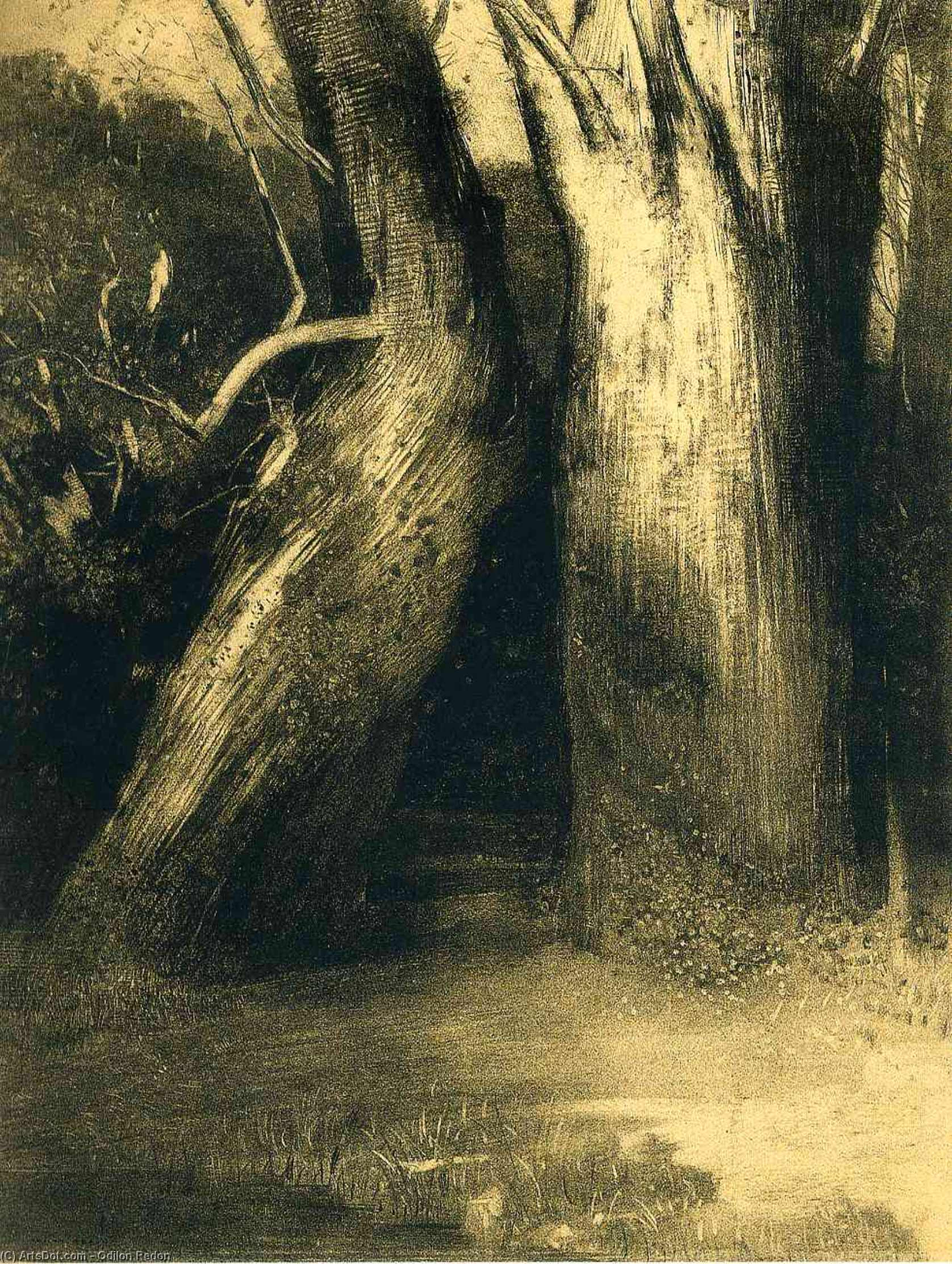 Two trees, 1875 by Odilon Redon (1840-1916, France) | Museum Quality Reproductions | ArtsDot.com