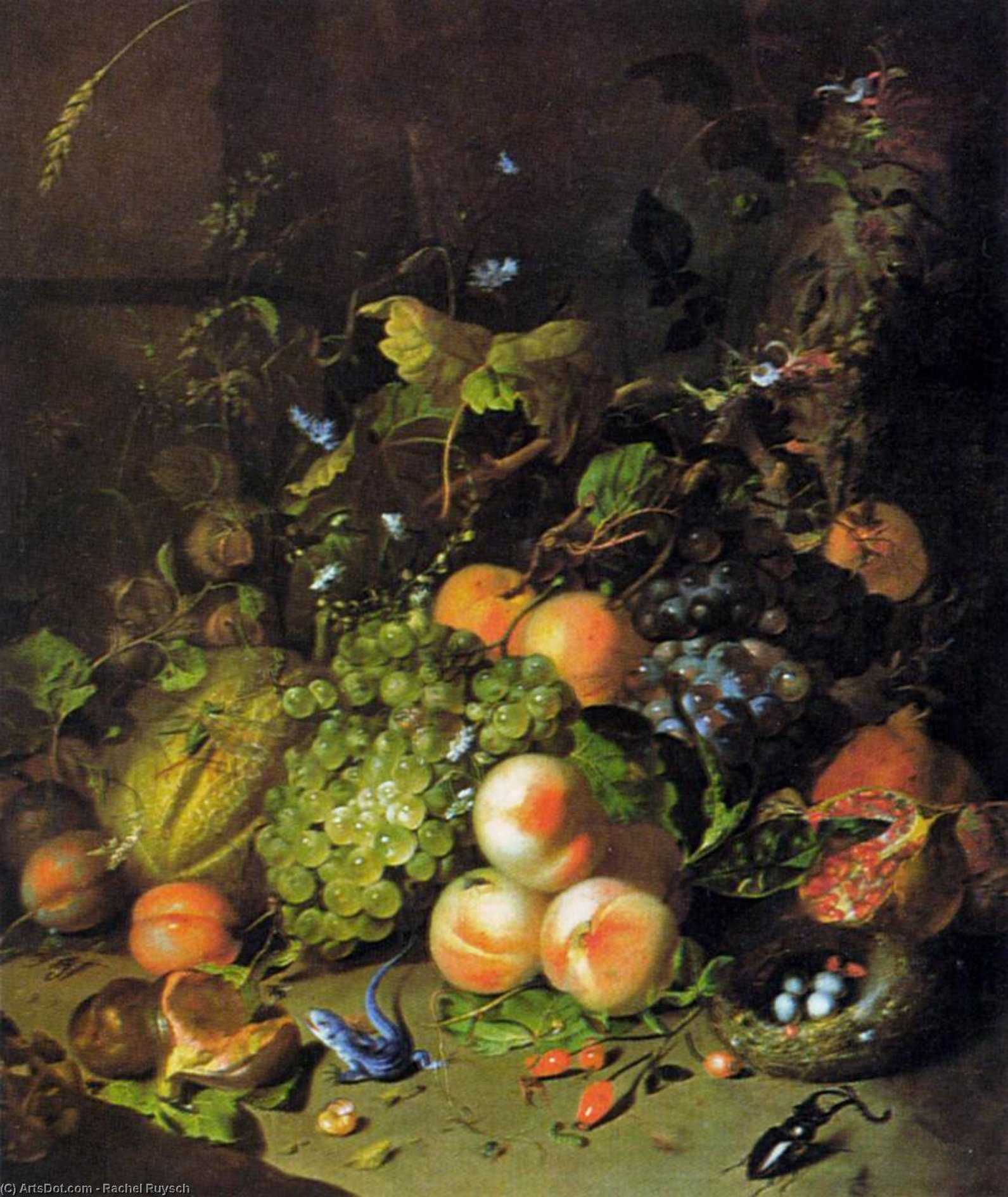 Flower Still-Life by Rachel Ruysch (1664-1750, Netherlands) | Museum Art Reproductions | ArtsDot.com