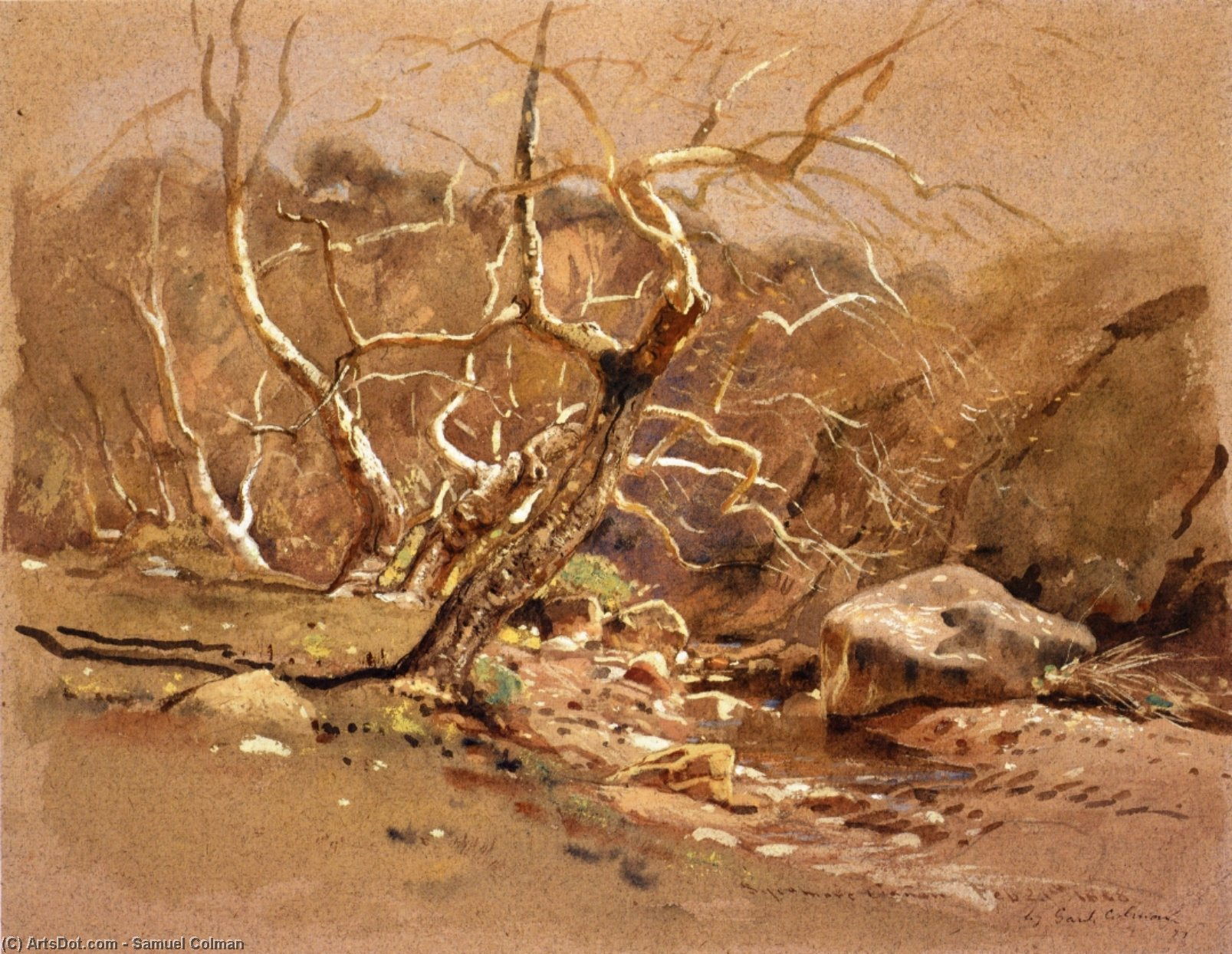 Sycamore Canyon, Watercolour by Samuel Colman (1832-1920, United Kingdom)