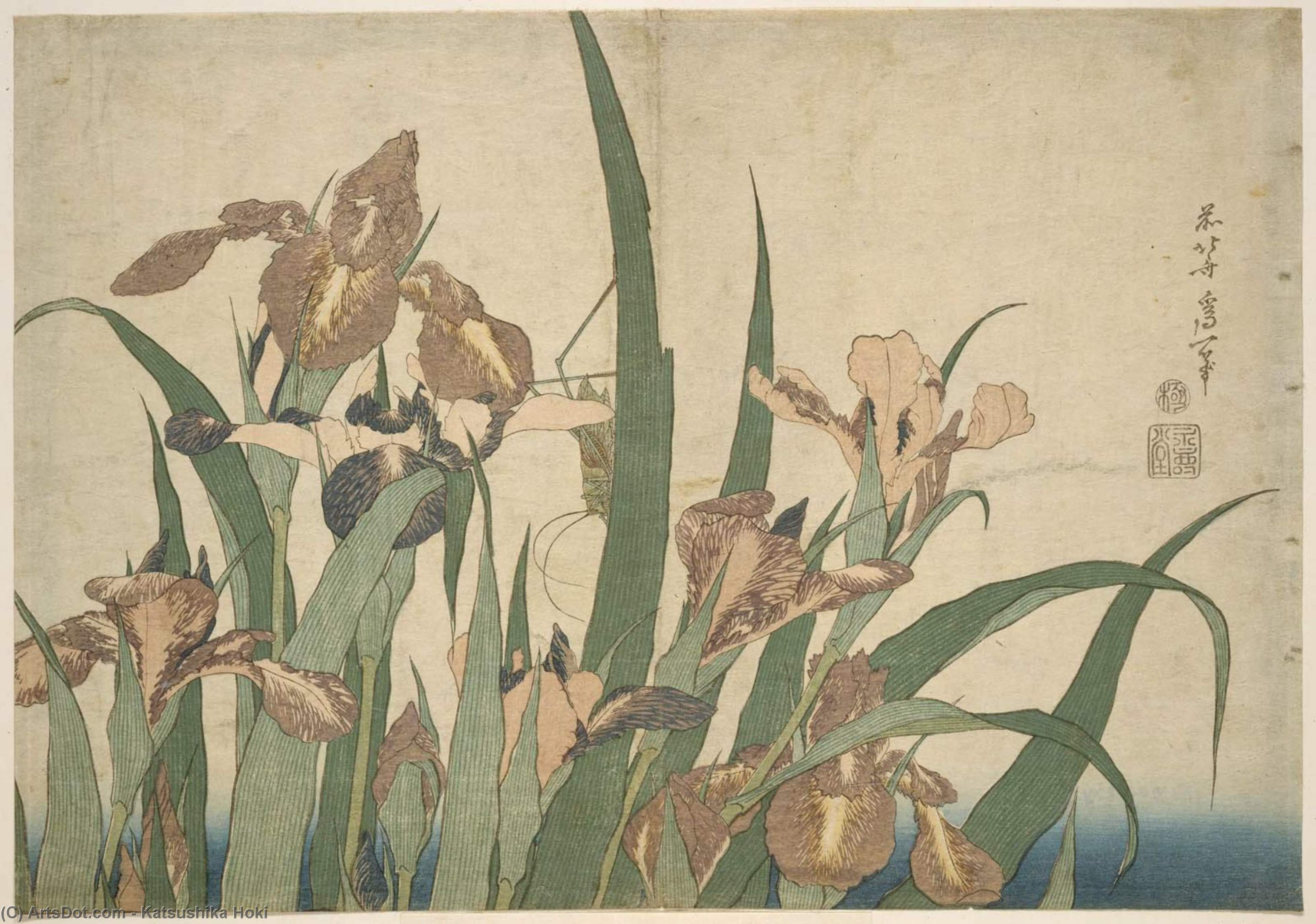 Irises And Grasshopper by Katsushika Hokusai (1760-1849, Japan) | Oil Painting | ArtsDot.com