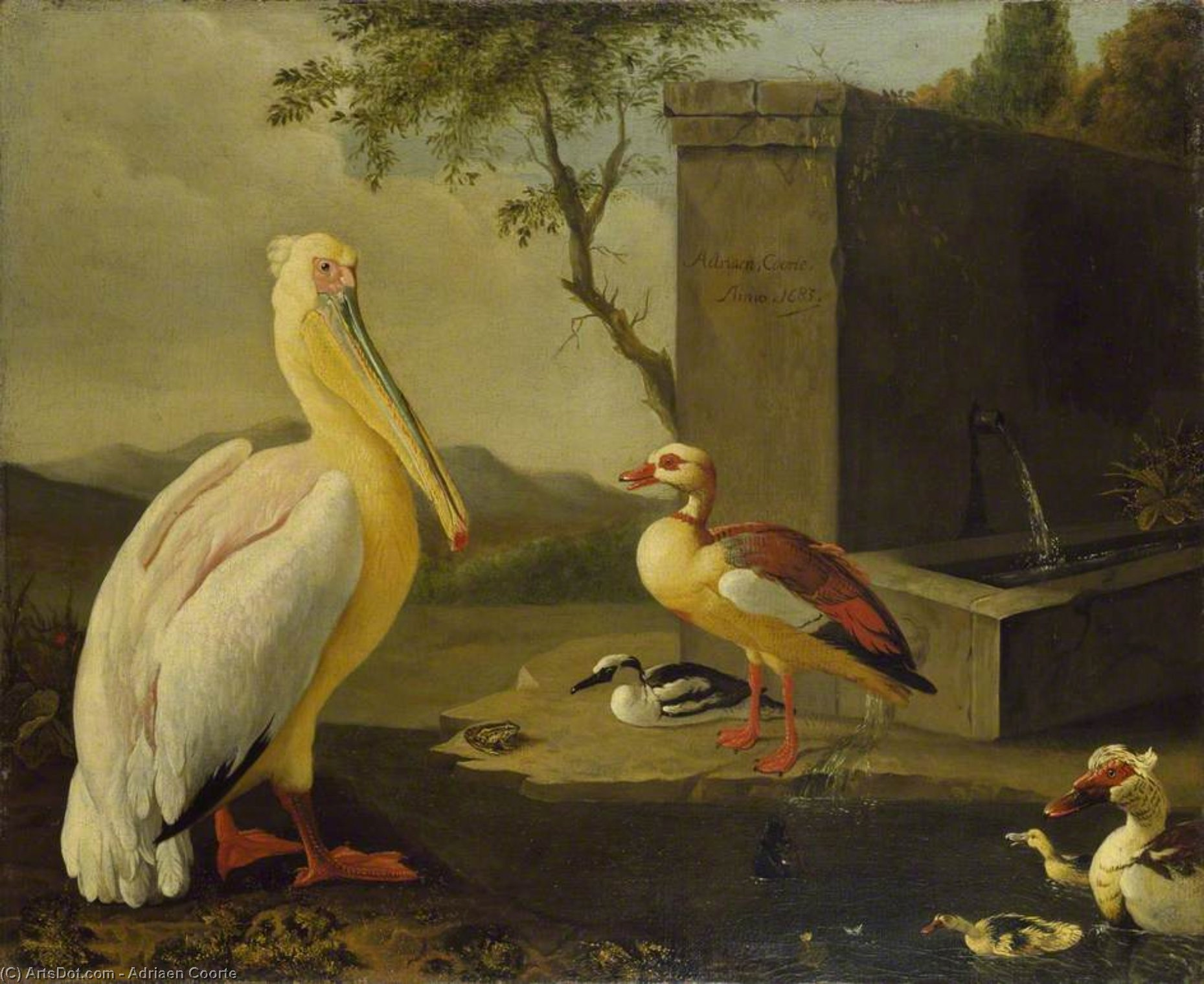 Oriental birds by Adriaen Coorte (1665-1707, Netherlands) | Museum Quality Reproductions | ArtsDot.com