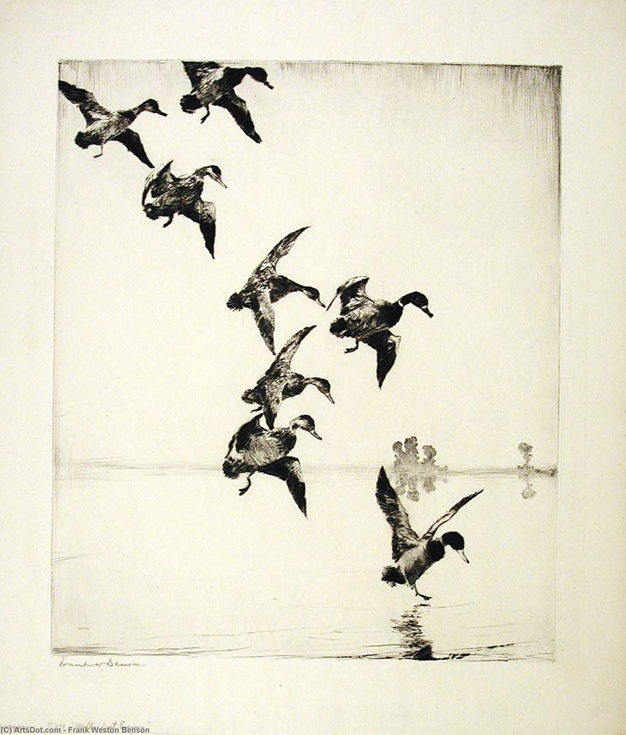 Mallards at Evening, Etching by Frank Weston Benson (1862-1951, United States)