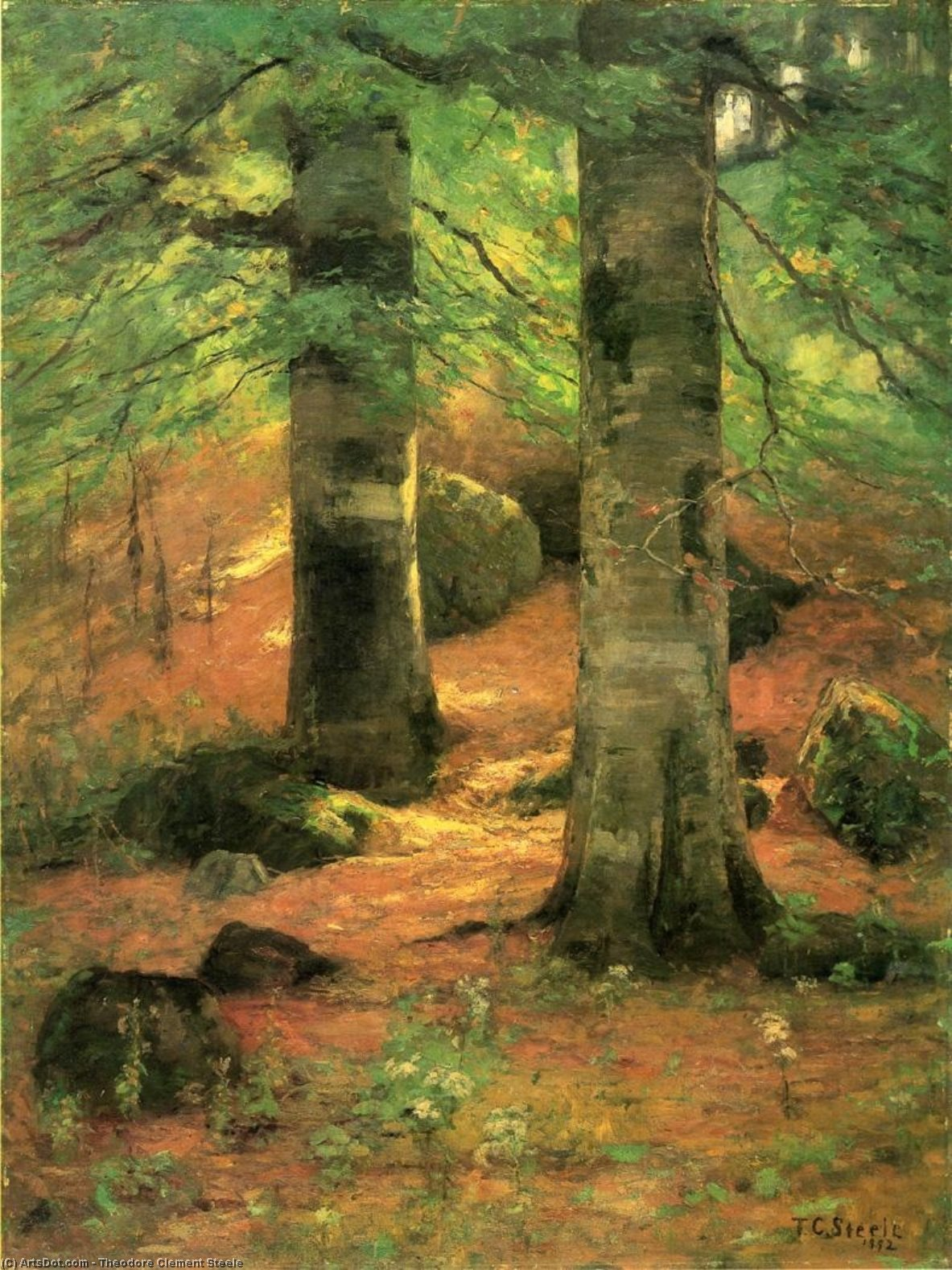 Vernon Beeches, Oil On Canvas by Theodore Clement Steele (1847-1926, United States)