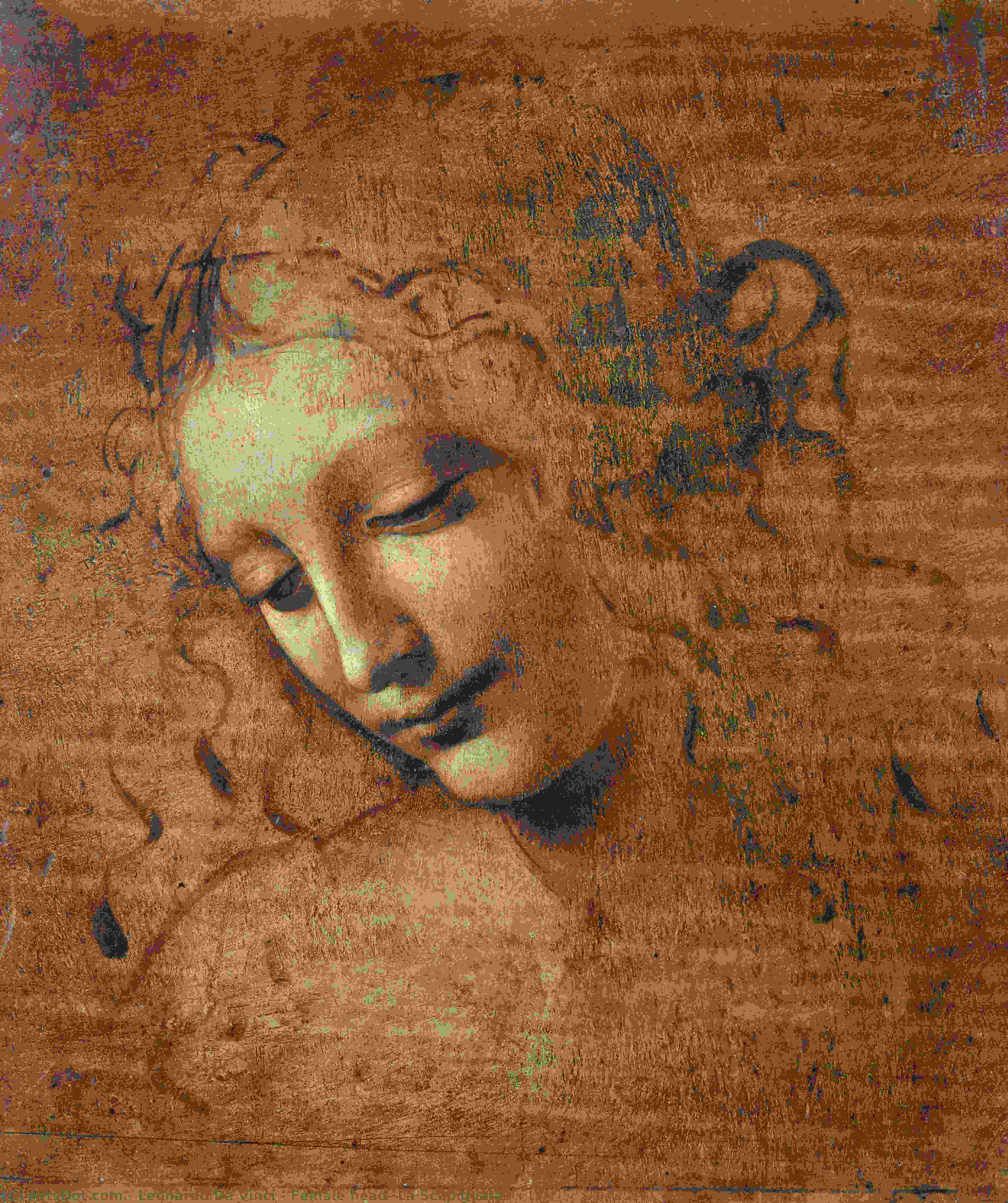 Order Art Reproductions | Female head (La Scapigliata), 1508 by Leonardo Da Vinci (1452-1519, Italy) | ArtsDot.com