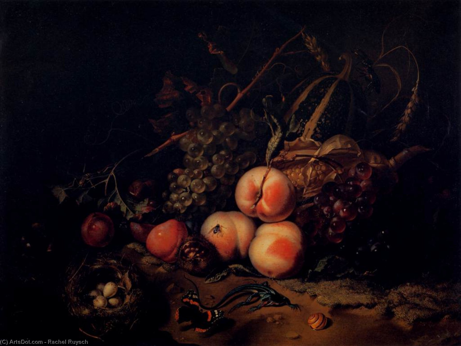Still-Life with Fruit and Insects, Oil by Rachel Ruysch (1664-1750, Netherlands)