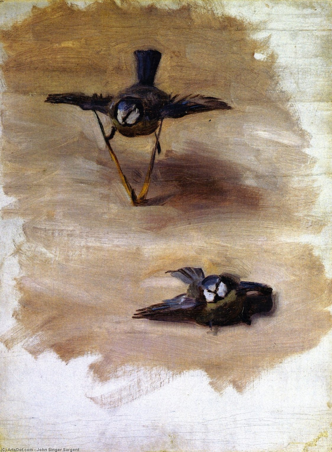 Order Paintings Reproductions | Studies of a Dead Bird, 1874 by John Singer Sargent (1856-1925, Italy) | ArtsDot.com