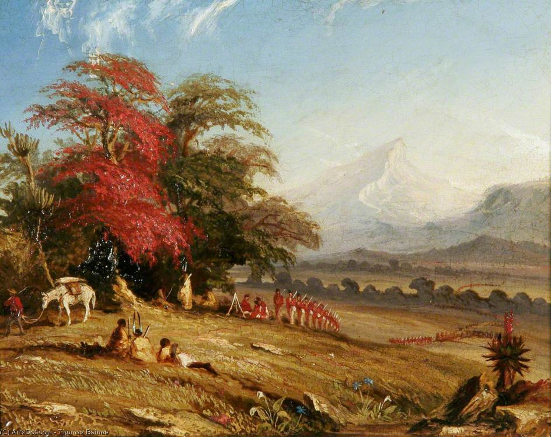 Hogsback, South Africa by Thomas Baines (1820-1875, United Kingdom)