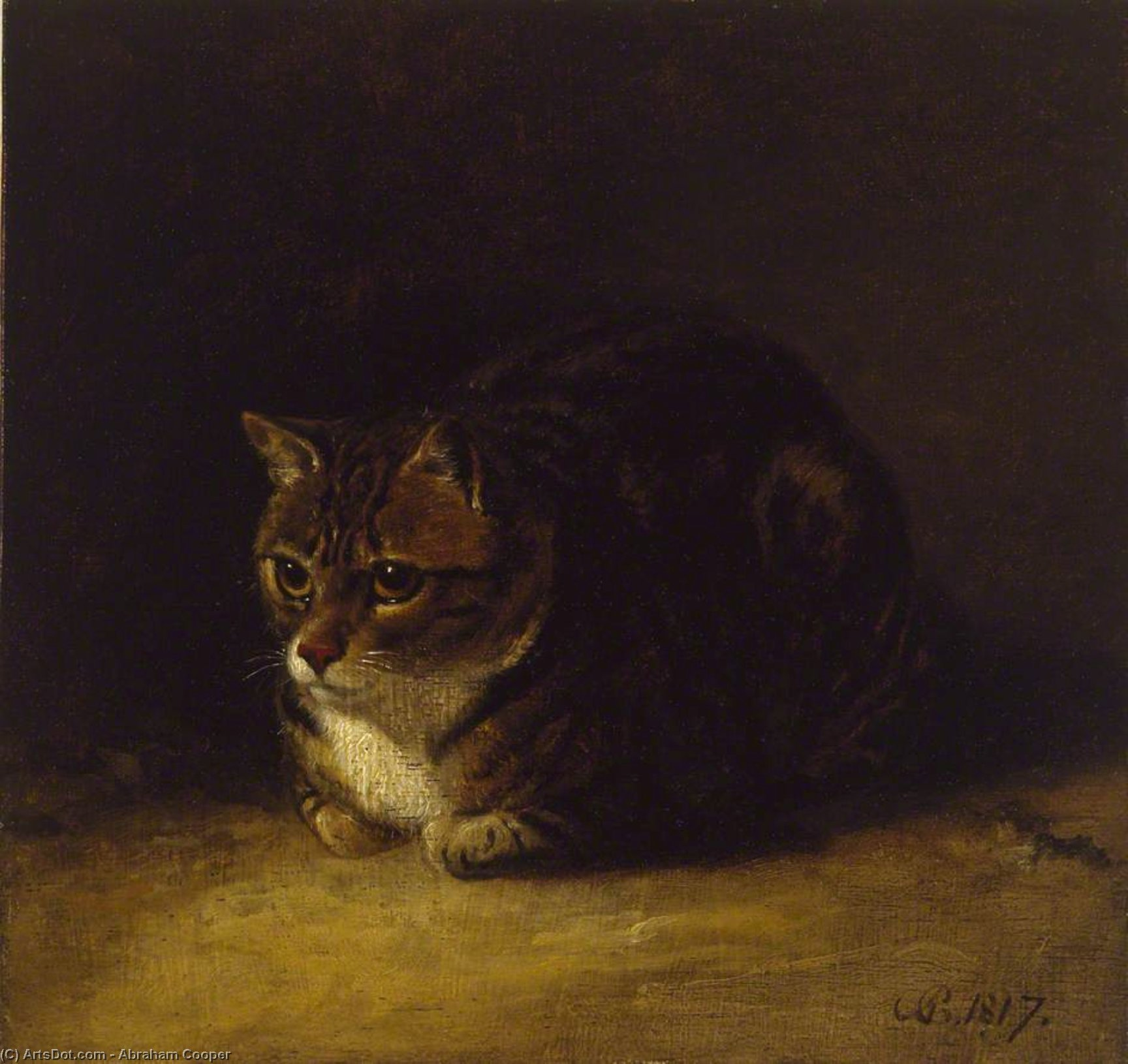 Study Of A Cat by Abraham Cooper (1787-1868, United Kingdom)