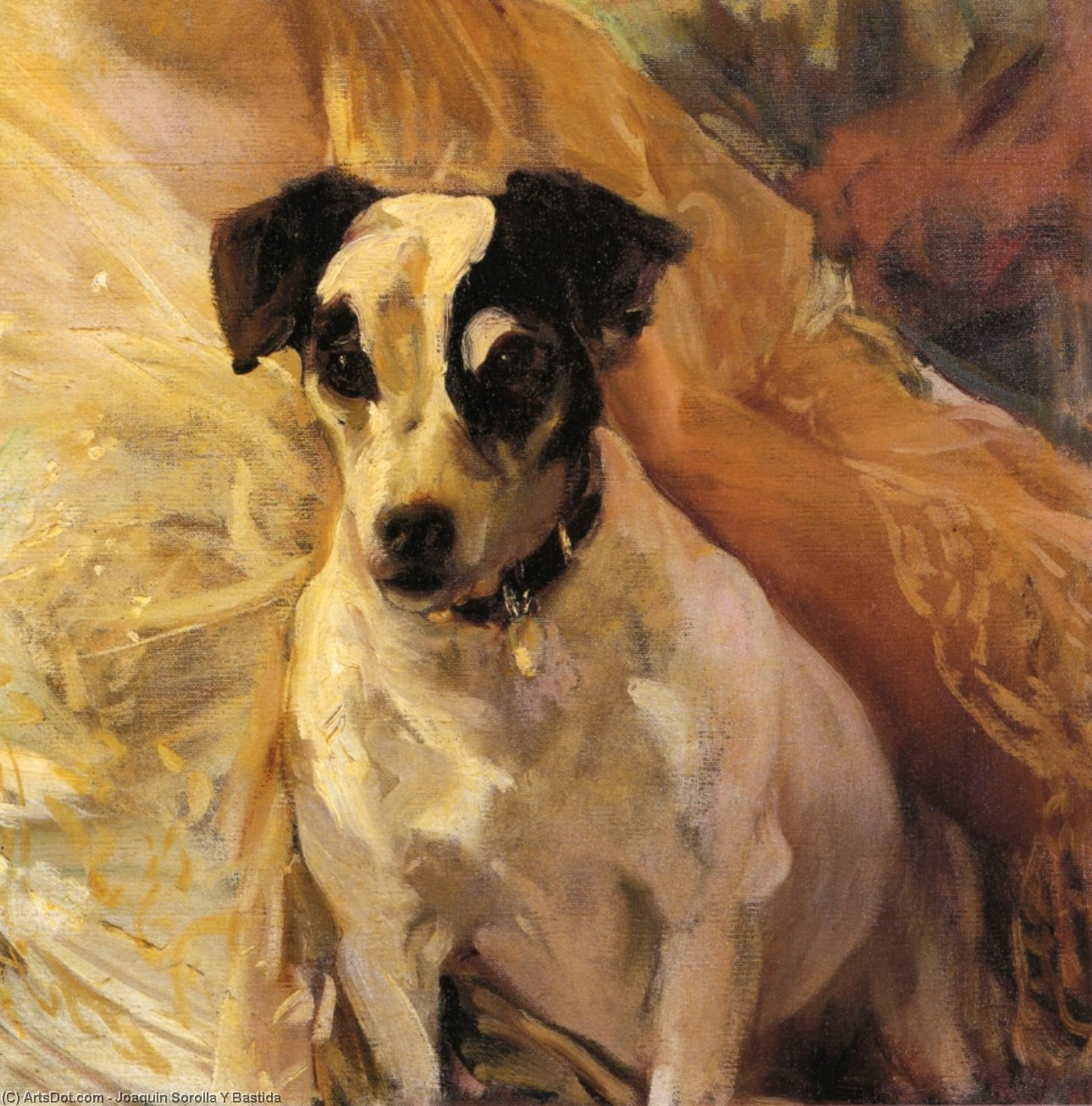 Portrait of a Jack Russell, Oil On Canvas by Joaquin Sorolla Y Bastida (1863-1923, Spain)