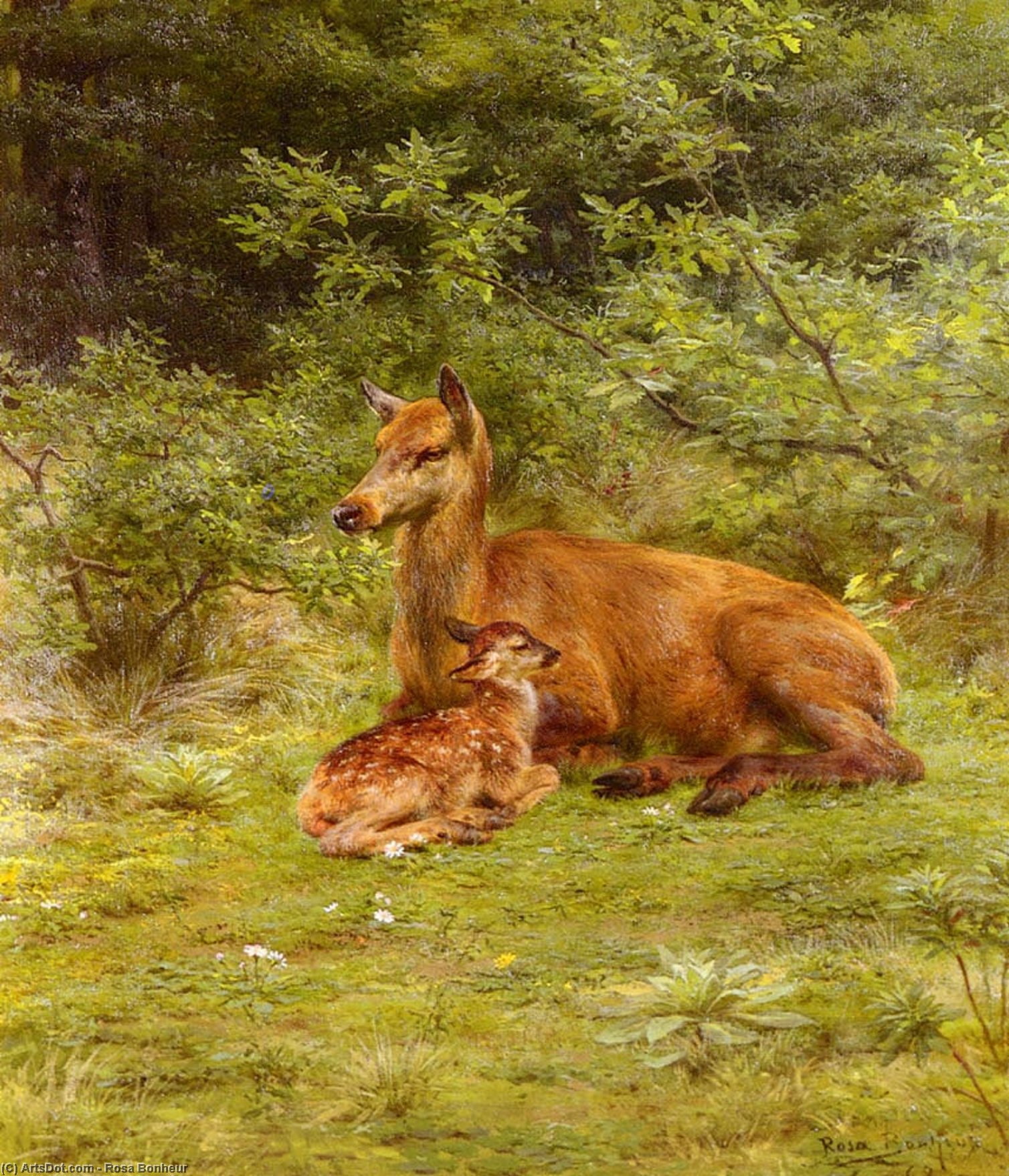 Doe And Fawn In A Thicket by Rosa Bonheur (1822-1899, France)