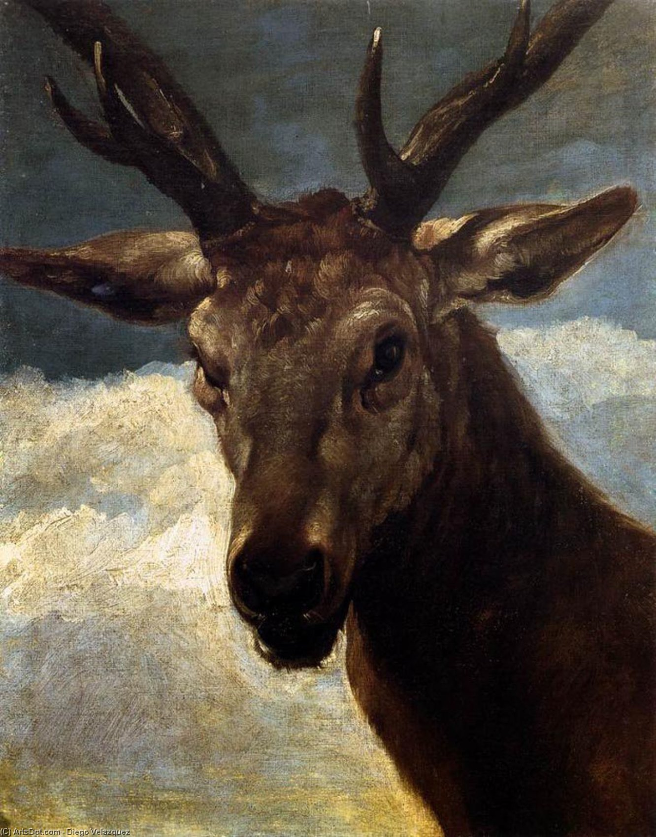 Head of a Stag, Oil On Canvas by Diego Velazquez (1599-1660, Spain)