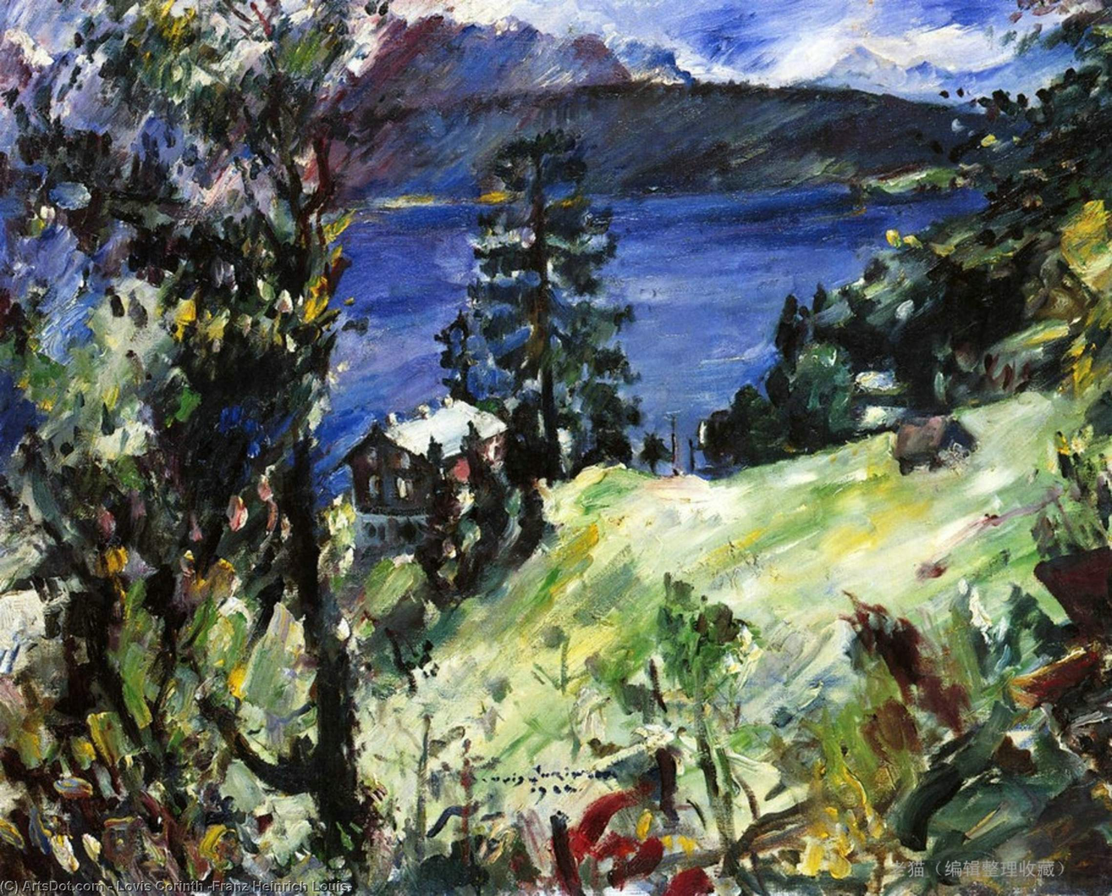 Walchensee Landscape, Oil On Canvas by Lovis Corinth (Franz Heinrich Louis) (1858-1925, Netherlands)