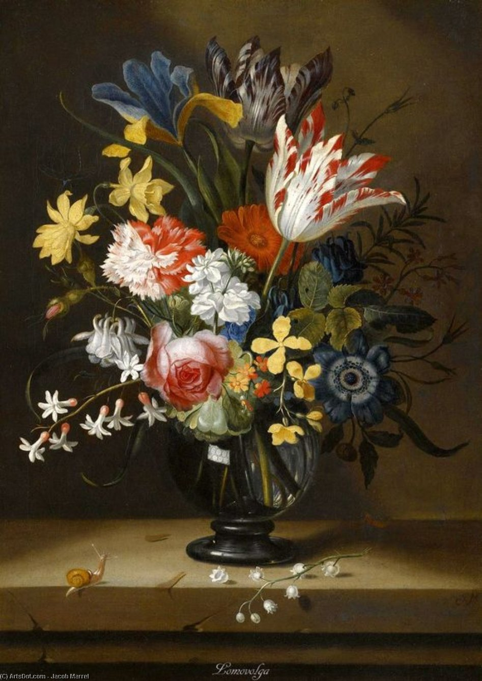 Still Life Of Flowers In A Vase With A Lizard On A Ledge by Jacob Marrel (1614-1681, Germany)