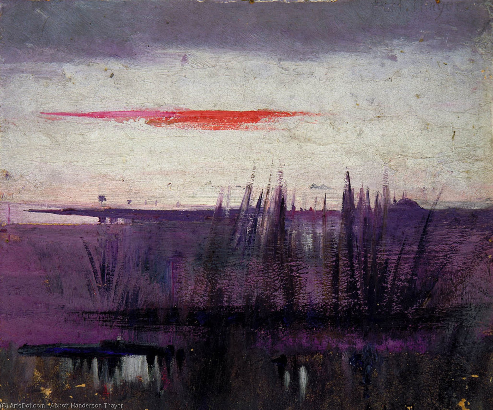 The Sky Simulated by White Flamingoes, 1905 by Abbott Handerson Thayer (1849-1921, United States)