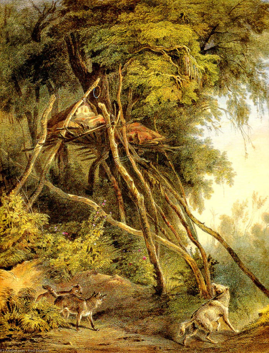 Tombs of Assiniboin Indians in Trees, 1833 by Karl Bodmer (1809-1893, Switzerland) | Art Reproduction | ArtsDot.com