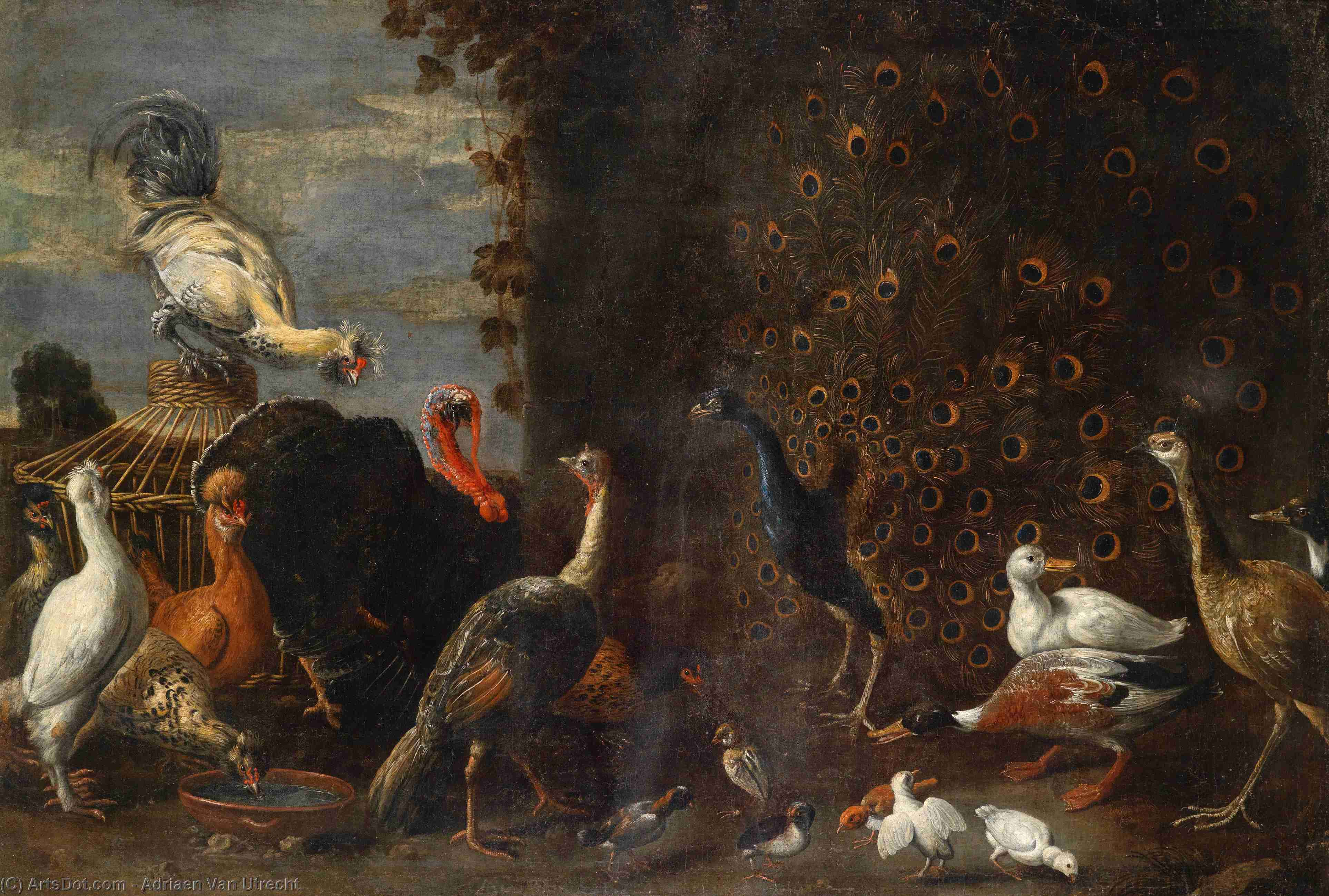 Chicken run with peacock turkey and duck by Adriaen Van Utrecht (1599-1652, Belgium) | Oil Painting | ArtsDot.com