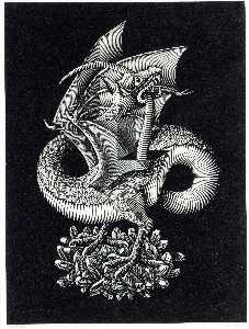 Maurits Cornelis Escher - Dragon