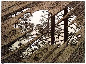 Maurits Cornelis Escher - PUDDLE