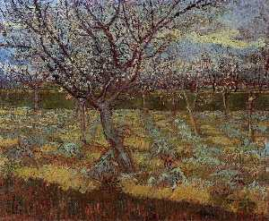 Vincent Van Gogh - Apricot Trees in Blossom 2