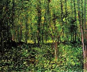 Vincent Van Gogh - Trees and Undergrowth 2