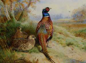 Archibald Thorburn - Cock And Hen Pheasant At The Edge Of A Wood