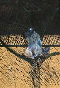 Francis Bacon - Study of a Baboon