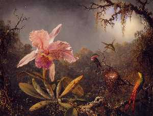 Martin Johnson Heade - Cattleya Orchid and Three..