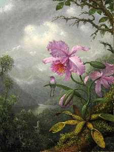 Martin Johnson Heade - Hummingbird Perched on an..