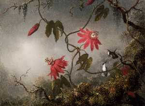 Martin Johnson Heade - Jungle Orchids and Hummin..