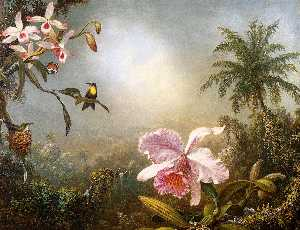 Martin Johnson Heade - Orchids, Nesting Hummingb..