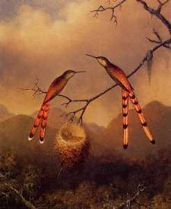 Martin Johnson Heade - Two Hummingbirds with The..