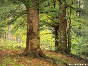 Theodore Clement Steele - Beech Trees