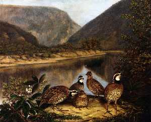 Titian Ramsey Peale Ii - Five Bobwhites at the Del..