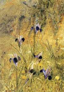 Henry Roderick Newman - Irises in the Garden