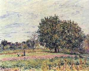 Alfred Sisley - Walnut trees at sunset in early October