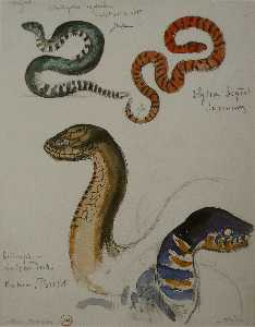 Gustave Moreau - Four studies of snakes