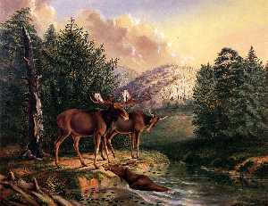 Titian Ramsey Peale Ii - Moose in Maine