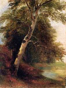 Asher Brown Durand - Nature Study: A Birch Tre..