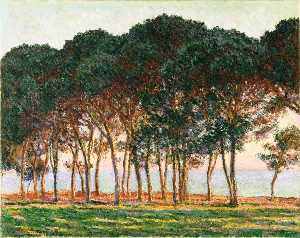 Claude Monet - Under the Pine Trees at the End of the Day