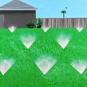 David Hockney - A lawn being sprinkled