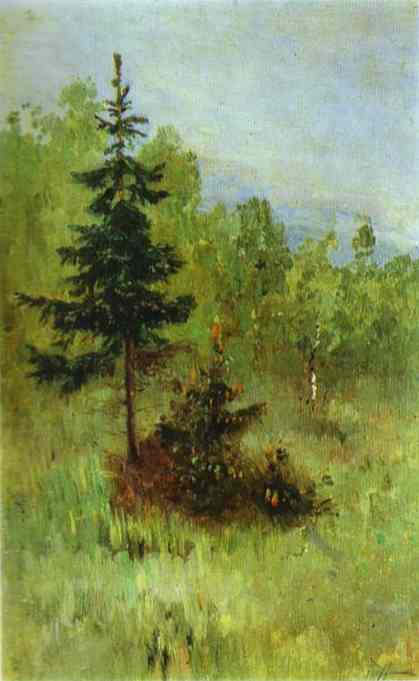 A Firtree, Oil by Mikhail Nesterov (1862-1942, Russia)