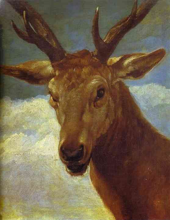 Head of a Stag, Oil by Diego Velazquez (1599-1660, Spain)