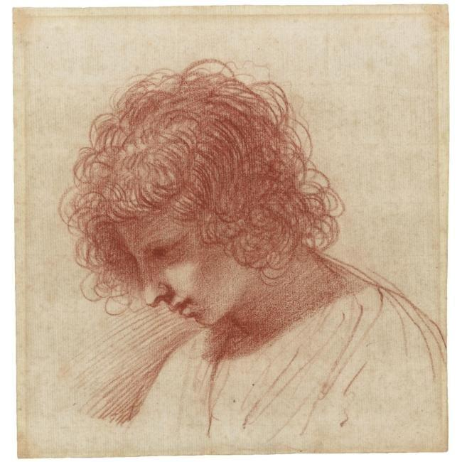 Head of a young man in profile, looking down to the left, Drawing by Guercino (Barbieri, Giovanni Francesco) (1591-1666, Italy)