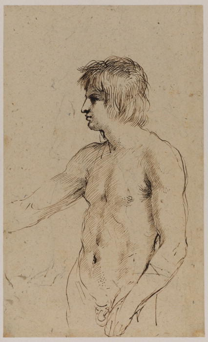 Nude figure of a young man, Drawing by Guercino (Barbieri, Giovanni Francesco) (1591-1666, Italy)