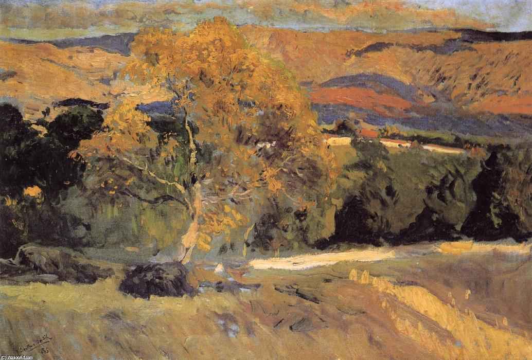 The Yellow Tree, La Granja, Oil On Canvas by Joaquin Sorolla Y Bastida (1863-1923, Spain)